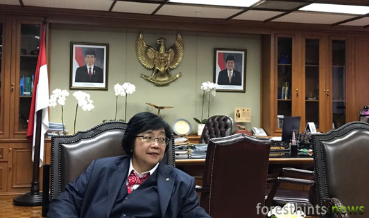 Minister presents photos of peat violations in palm oil concession