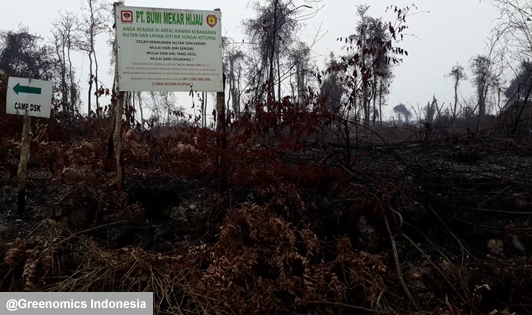 Sinarmas Forestry company found guilty of unlawful conduct by High Court over peat fires