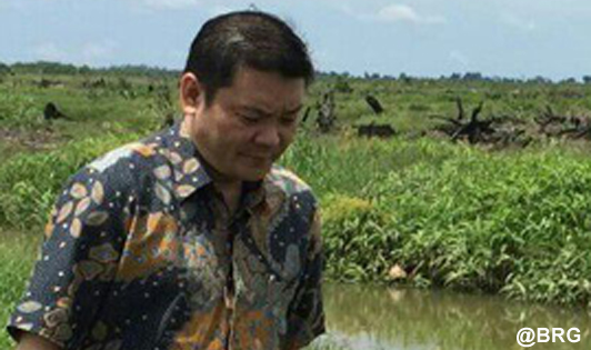 President gets peat agency report card, demands further peat restoration action